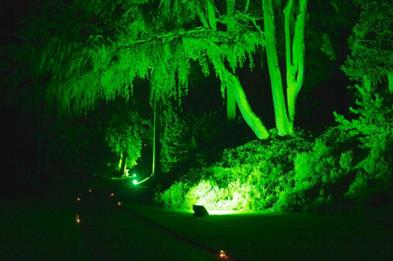 Bonfire, lantern walk and fireworks at Biddulph Grange Garden
