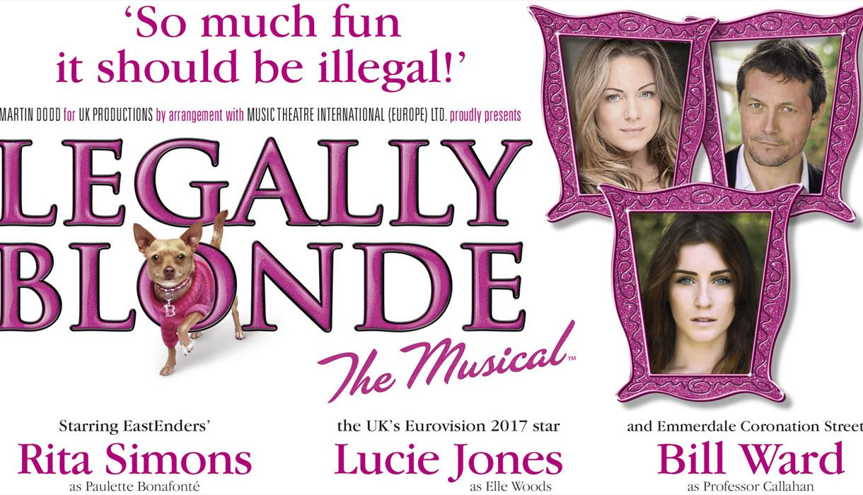 The Musical - Legally Blonde