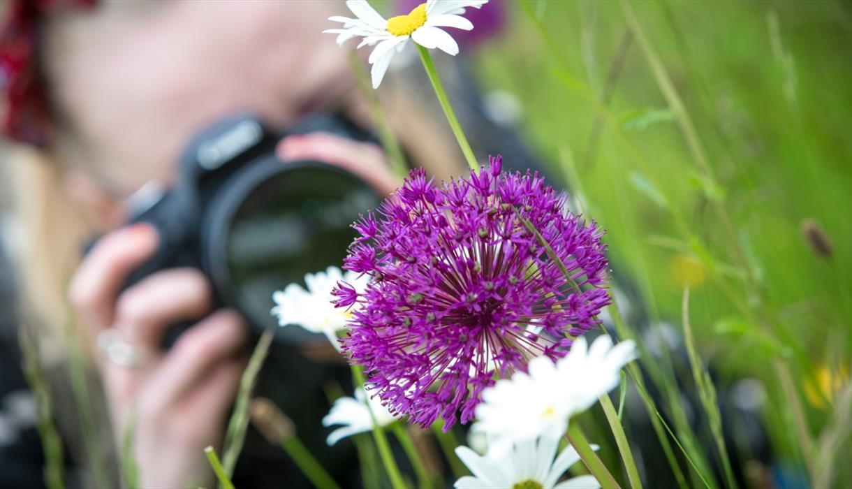 Photography Workshops for Intermediate