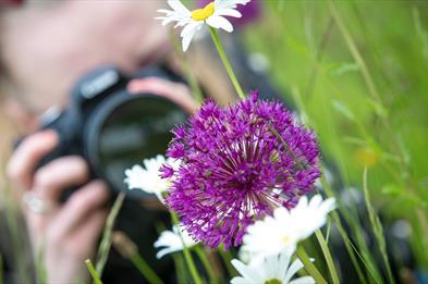 Photography Workshops for Beginners