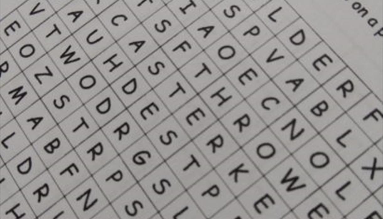 Word Search (Home Activity)